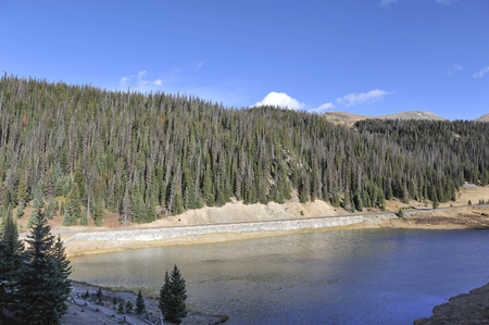 Nearly half of the evergreen trees died from insects beside the lake at the base of Mount Ida in the Colorado Rocky Mountains