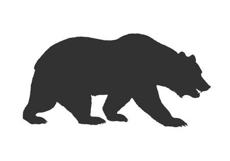 brown grizzly bear silhouette side view walking on all fours vector