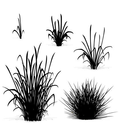 various tufts of grass elements black silhouettes black and white isolated on white background
