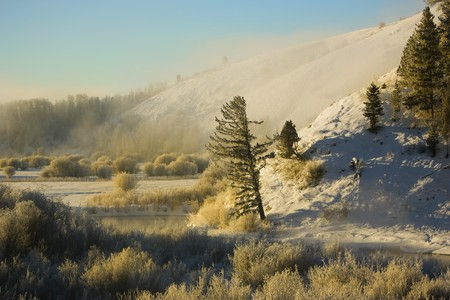 A winter snow scene with a tree by a river, blue sky and fog on a mountainside.
