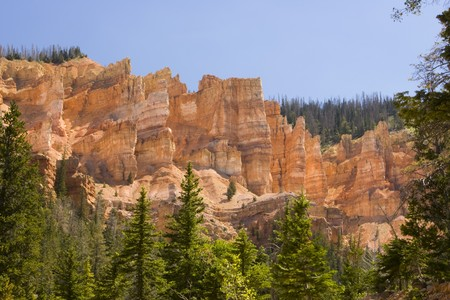 Sun lit eroded cliffs of Bryce Canyon, Utah