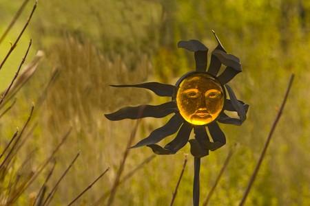 Sun in a field Stock Photo