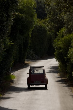 Vintage Citroen car on a tree lined road in color