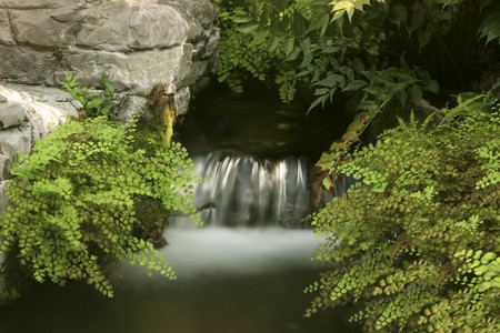 Soft focus water fall surrounded by ferns and rock Stock Photo