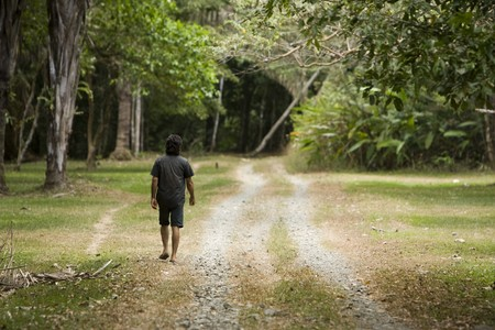 A man walks down a road in a rainforest