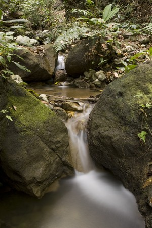 A small waterfall softly flows through a rain-forest sourounding