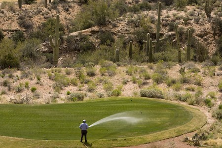 A gardner waters a Golf Green in the Desert