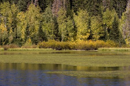 Fall forest colors line the banks of Silver Lake