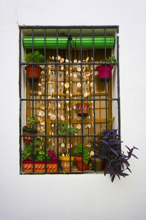 nicely: Nicely decorated window