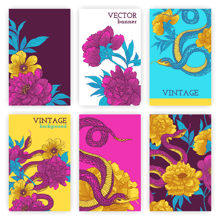 constrictor: Set of brochures in vintage style with snakes and flowers. Vector design templates. Vintage frames and backgrounds.