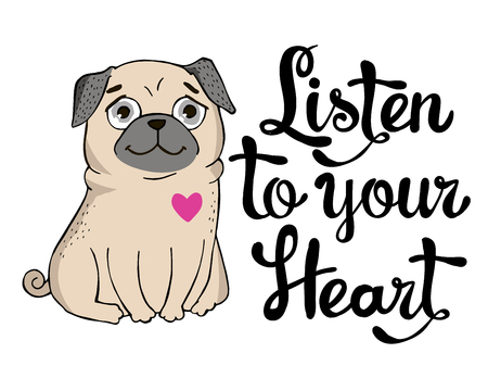 congratulations banner: Valentines Day Greeting Card with funny Pug and lettering. Listen to your heart. Vector hand drawn illustration. Illustration