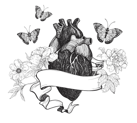 animal vein: Human anatomical heart with flowers, ribbon and butterfly isolated on white background. Vintage hand drawn vector illustration.