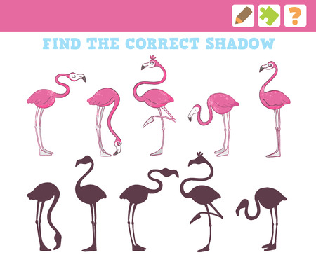 Flamingos. Education Game for Children. Find the correct shadow. Vector Illustration.