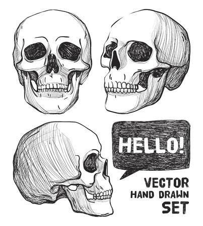Arte Del Cráneo Y Flowers.Tattoo, Colorear La Ilustración Books ...