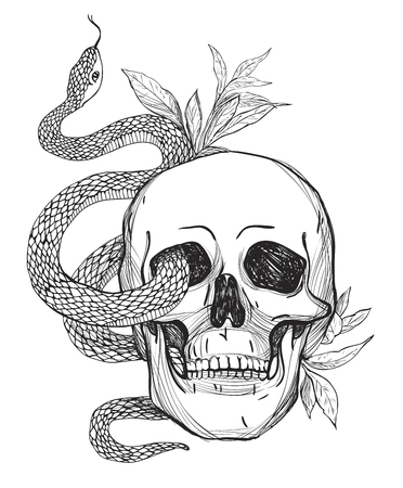 Skull and Snake. Tattoo art, coloring books.  vintage illustration Isolated on white background.