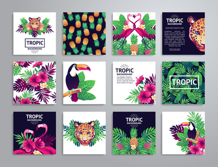 plant design: Tropical printable set. cards, notes and with toucan, leopard, exotic flowers and fruits.