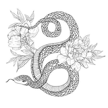 뱀과 꽃. 문신 예술, 색칠 공부 책. 빈티지 그림 흰색 배경에 고립. 일러스트