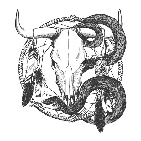 Bull skull with feathers, snake and dreamcatcher. Native American Indian talisman. Vector hand drawn hipster illustration isolated on white background. Boho design, tattoo art, coloring book. Illustration