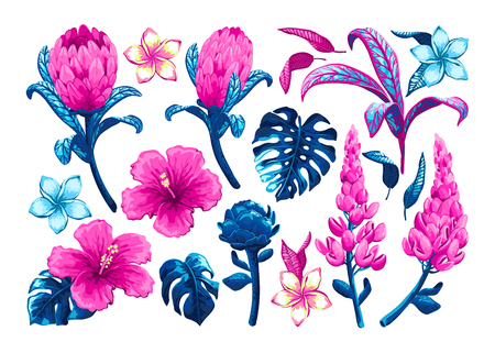 Tropical flowers and leaves. Set of vector hand drawn jungle leaves and exotic flowers in trendy style isolated on white background.