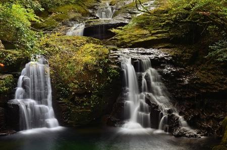 unexplored: Stream  waterfall