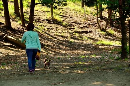 barrettes: Walk the dog