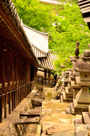 The Temple of Japan