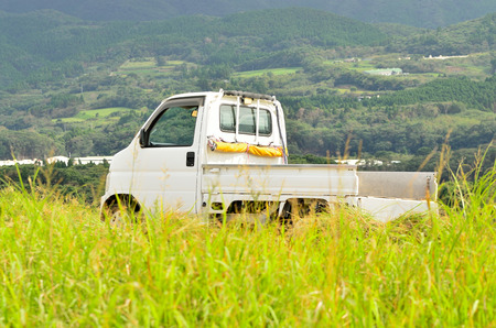 Farming landscape and light-duty trucks