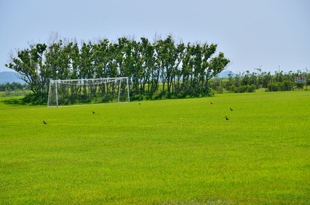 Goal posts Stock Photo