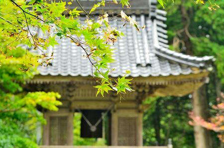 Japan Temple landscape