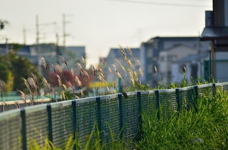 Fence around a neighborhood 写真素材