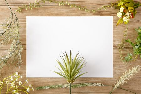 Blank paper with green