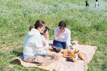People enjoying a picnic outdoors on fine day Foto de archivo
