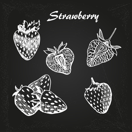 strawberry, Vector hand drawing on chalk board Vector