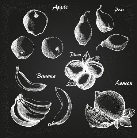 vector hand drown set with fruit on chalk-board Illustration