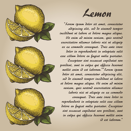Lemon, hand drawn lemon with leaves, card Illustration