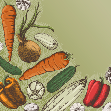 vegetable garden: the card with vegetables