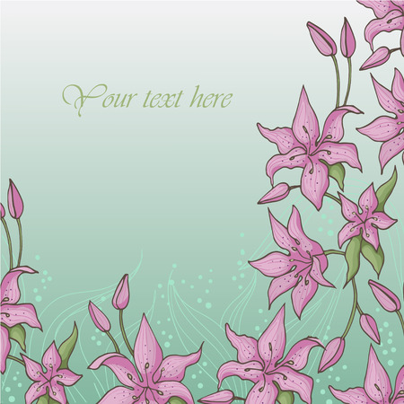 pink lily: Pink lily is on a blue background. Card with blooming lily. Vector illustration.
