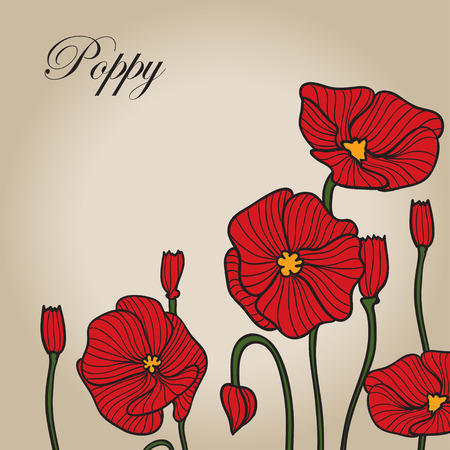 Poppies vector color sketch. Background for design