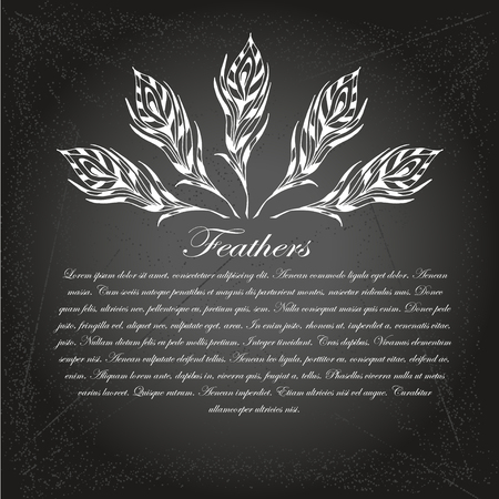 The sketch of feathers. Hand drawn vector  for design on chalk-board Illustration