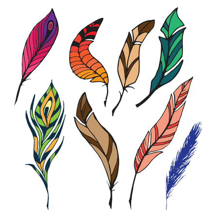 The sketch of feathers. Hand drawn vector  for design set.