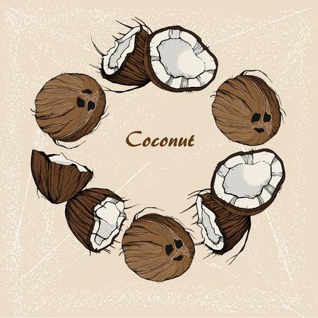stile: Coconut sketch in retro stile on vintage background. For design