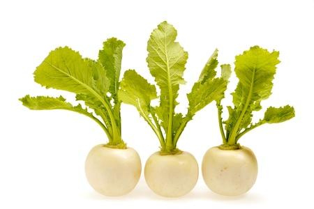 Turnip Standard-Bild