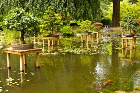 Far East landscaping in the Albert Kahn garden in Paris Stock Photo
