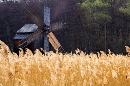 traditional windmill: Romanian traditional windmill