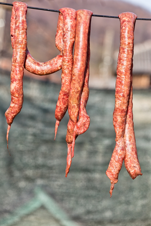 bowels: Romania traditional pork sausages hanging to dry