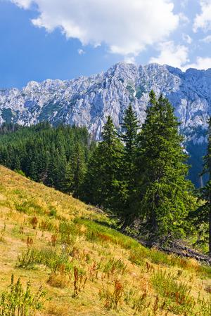 Piatra Craiului Mountains are a mountain range in the Southern Carpathians in Romania Stock Photo