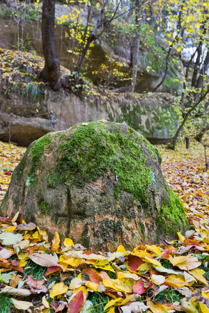 Cross symbol carved on a rock covered with moss in the forest