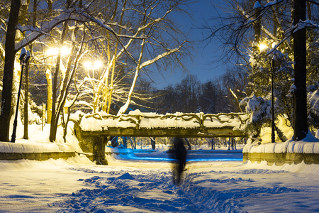 Night walk in in the vintage park of Herastrau Bucharest Romania in winter