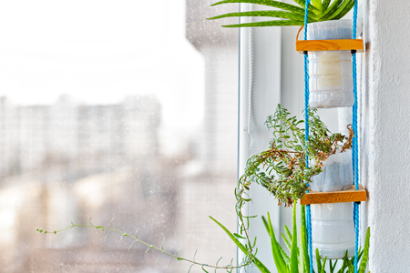 Hanging  multi plant system, using pots from recycled plastic milk containers Reklamní fotografie