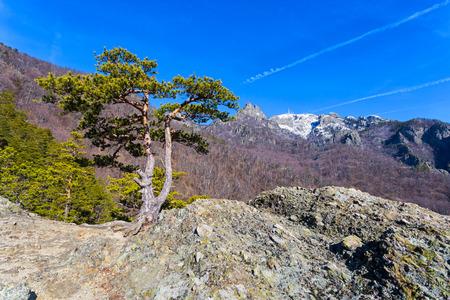 Mount Cozia in Vlacea county, Romania on a sunny day